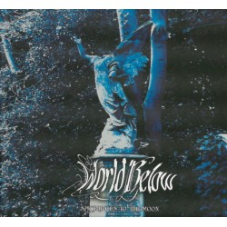 RING OF FIRE - Lapse Of Reality  (CD Jewel Box)