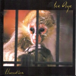 SIX FEET UNDER - Maximum Violence (CD+bonus live CD)